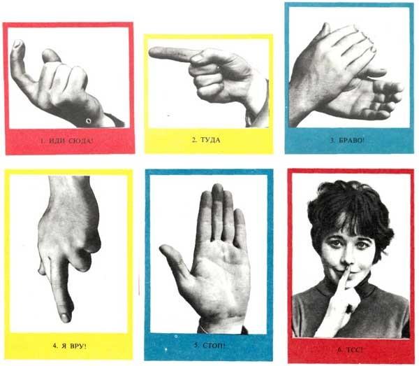 группы жестов с картинками нас пол неба