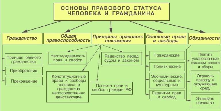 Политические права российских граждан реферат 6402