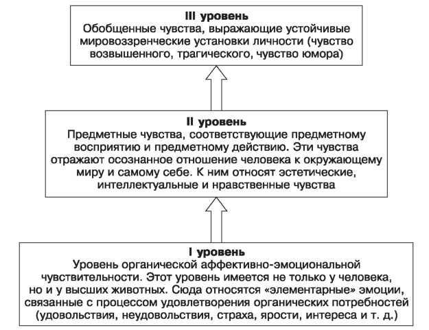 курсовая работа на тему физиологическая роль эмоций