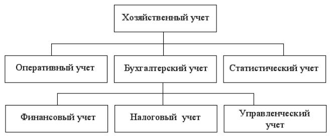 организация бухгалтерского финансового учета
