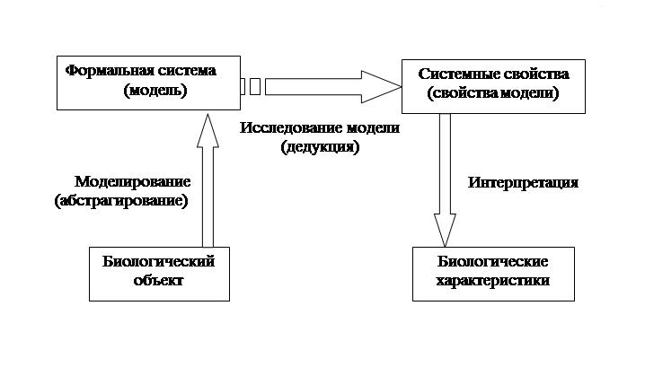 Виды моделей систем управления контрольная работа минск модели работа